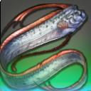 Kleiner Leviathan